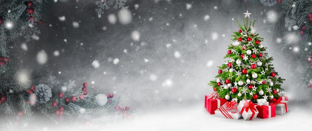 Wir haben gewonnen! Weihnachtsbaumaktion 2014